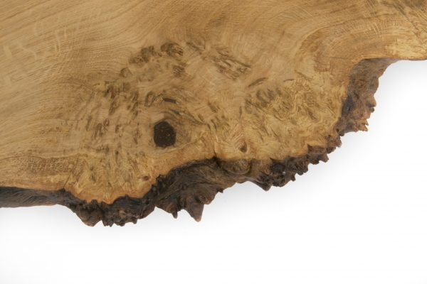 Live Edge Burr Oak Coffee Table American Black Walnut Legs Close Up